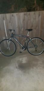 Southern cruiser mountain bike