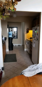Apartment - furnished - 1 room available - female roommate