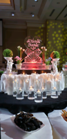 Chocolate fountain with Ice Sculpture $499/=