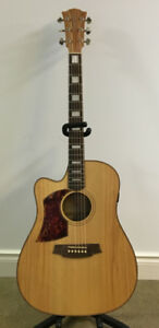 Cole Clark Acoustic/Electric Guitar – FL2AC-BM (Left-Handed)