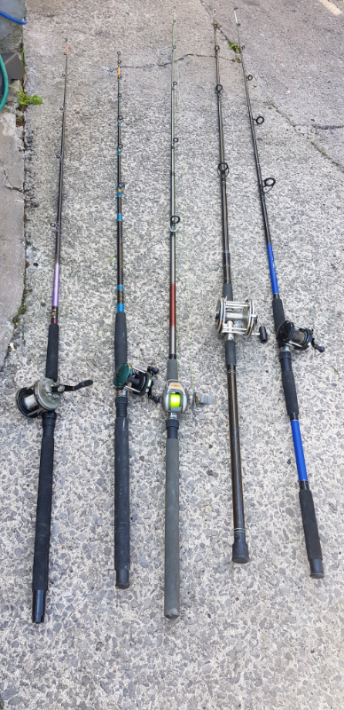 Fishing rod | in Ely, Cardiff | Gumtree