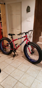 Vélo de montagne fat bike de collection