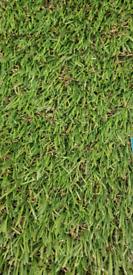 30mm grass