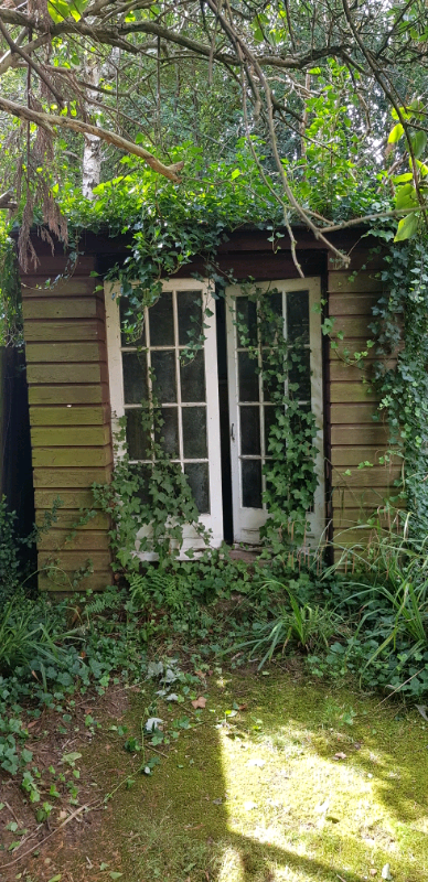 Garden shed | in Beeston, Nottinghamshire | Gumtree