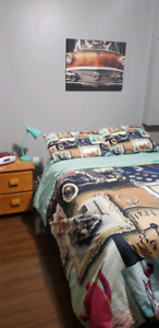 Themed double Bedroom set. With canvas pictures. Students