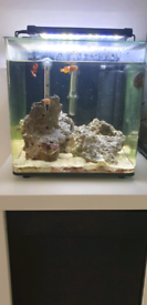 22 litre marine fish tank, with accessories