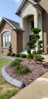 Landscaping Services/Tree Removal!!!
