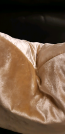 Beautiful gold velvet feather filled cushion