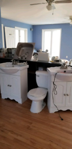 Vanities, kitchen sink and toilets