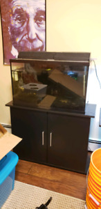 29 gallon tank with stand