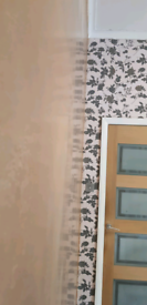 Plastering painting and decorating