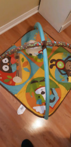 Baby Playmat and Activity Gym