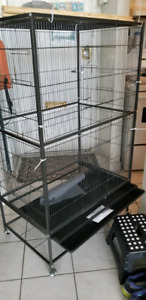 Large bird cage for small birds
