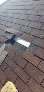 Stupendous Roof Repairs