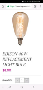Looking for Scentsy Edison 40W bulb