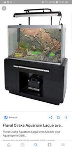 Looking for an aquarium
