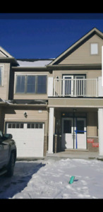 East Gwillumbury Townhouse for Rent