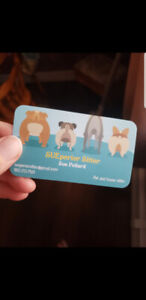 In-home Pet Sitter