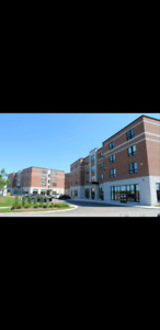 Lease sublet Foundry Lofts Brock University 1-Aug 31st 2019
