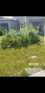 Outdoor Property Maintenance