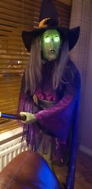 Full size wanda witch