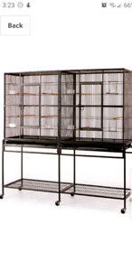 Want flight or double bird cage