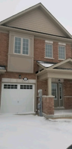 Brand new house available for rent in th area of Rolling meadows