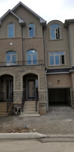 Brand New townhome full of light for Rent Available Immediately