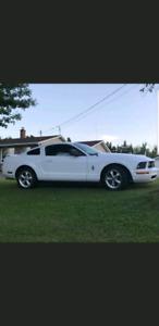 2008 ford mustang V6 90k!!!! Alberta car