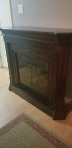 Electric Fireplace Heater $125 OBO