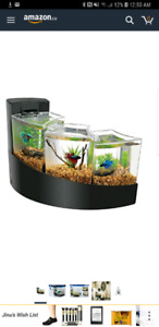 Fish tank and 2 betta fighter fish