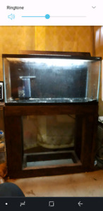 35 gallon tank, stand, filter, gravel/substrate etc
