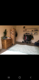 Large double room to rent in Westbury Park