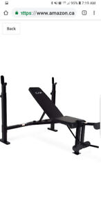 Inpex competitor Workout bench