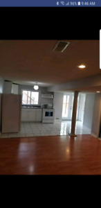 Bright spacious 1 bedroom walkout basement in Pickering