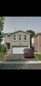 Single detached home In Pickering for 1 year Lease