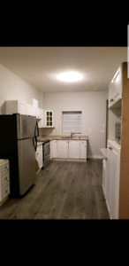 2 Bedroom, 1 Bathroom in Aberdeen