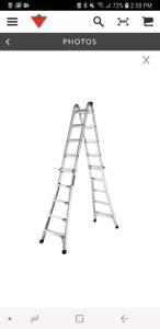 21 foot multi ladder