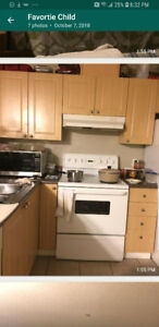 Two bedroom apartment is available for lease transfer.