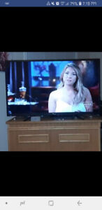 3 month old  55 INCH RCA Smart TV