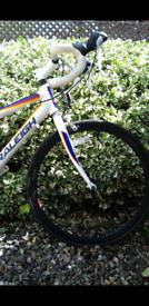 Bicycle- Raleigh Junior Team Road Bicycle