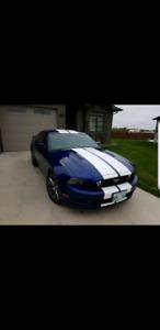 2014 Mustang GT 5.0L