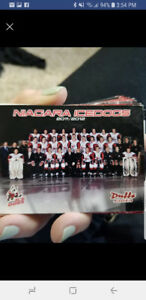 2011/2012 ice dig players cards