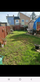3 bed house in Colchester for large 2 bed house in e17. Homeswap