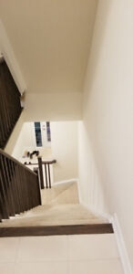Brand New never lived Freehold Townhouse for Rent in community o
