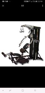 Inspire M4 home gym - functional trainer