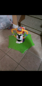 Zebra bouncer