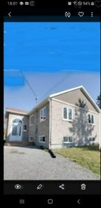 3 BDRM FOR RENT IN MINNOW LAKE 2100 PLUS UTIL. AVAIL. NOV 1ST