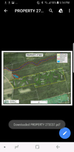 59 acres of wood land