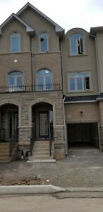 Brand New never lived Freehold Townhouse in waterdown,hamilton